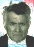 Ilija Delimarić